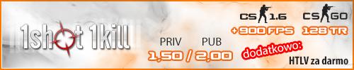 1shot1kill.pl - Servery